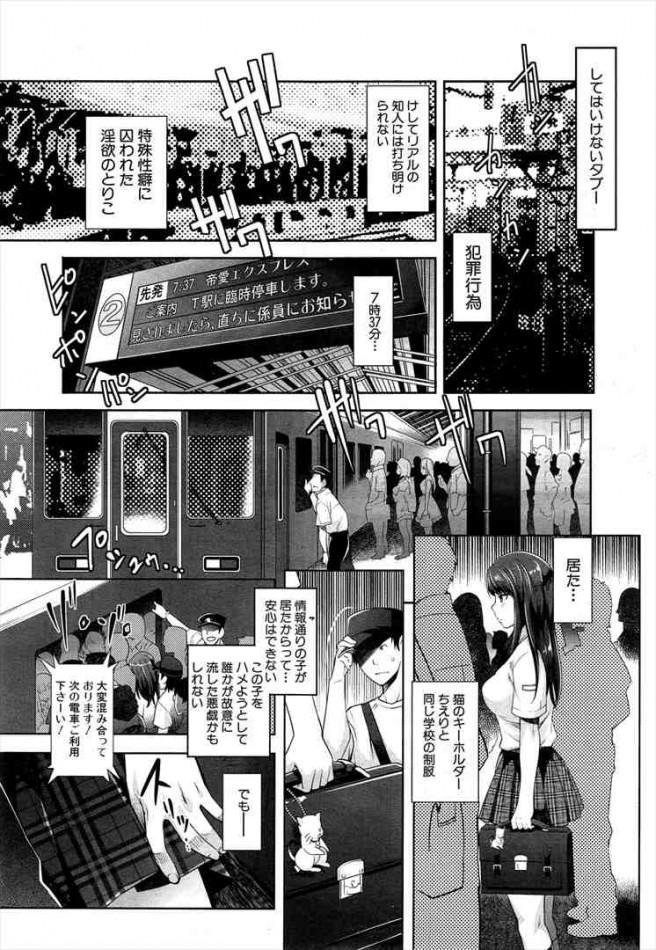 【エロ漫画・エロ同人】巨乳人妻の姉と痴漢プレイで近親相姦してる弟www dl (11)