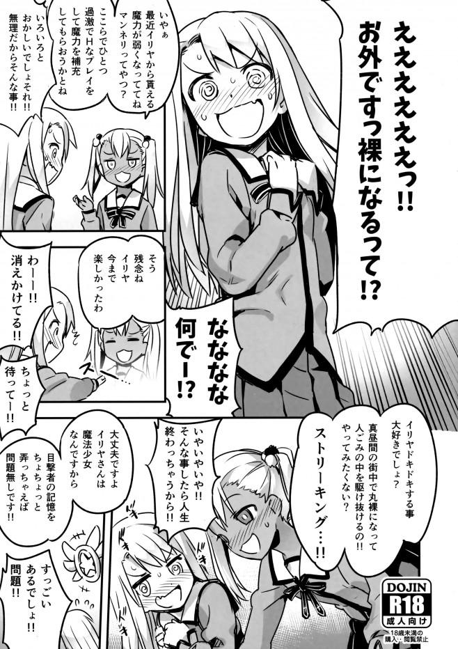 会場限定本 (Fate kaleid liner プリズマ☆イリヤ) (1)