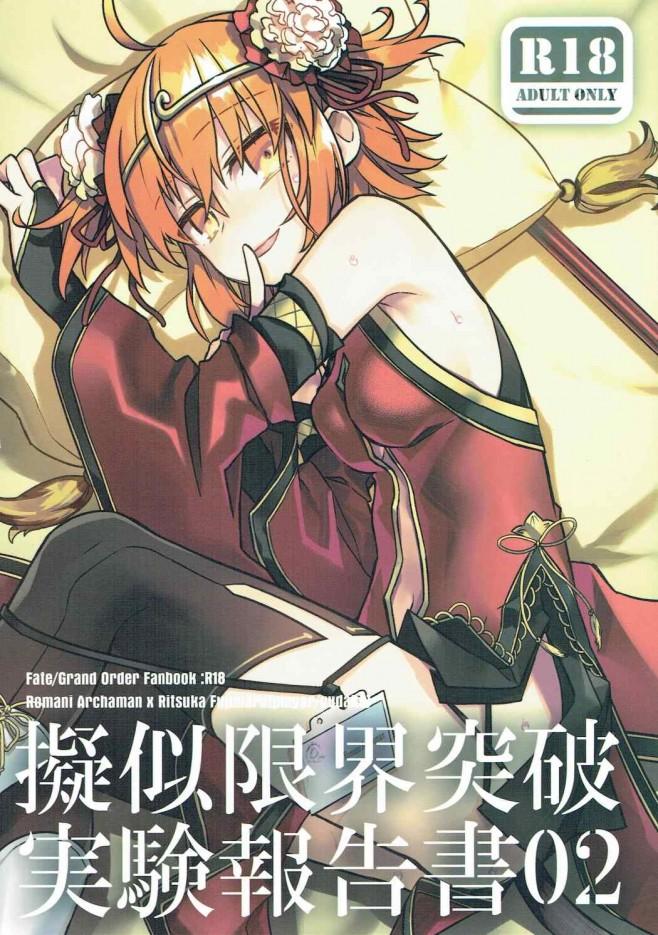 擬似限界突破実験報告書02 (Fate Grand Order) (1)