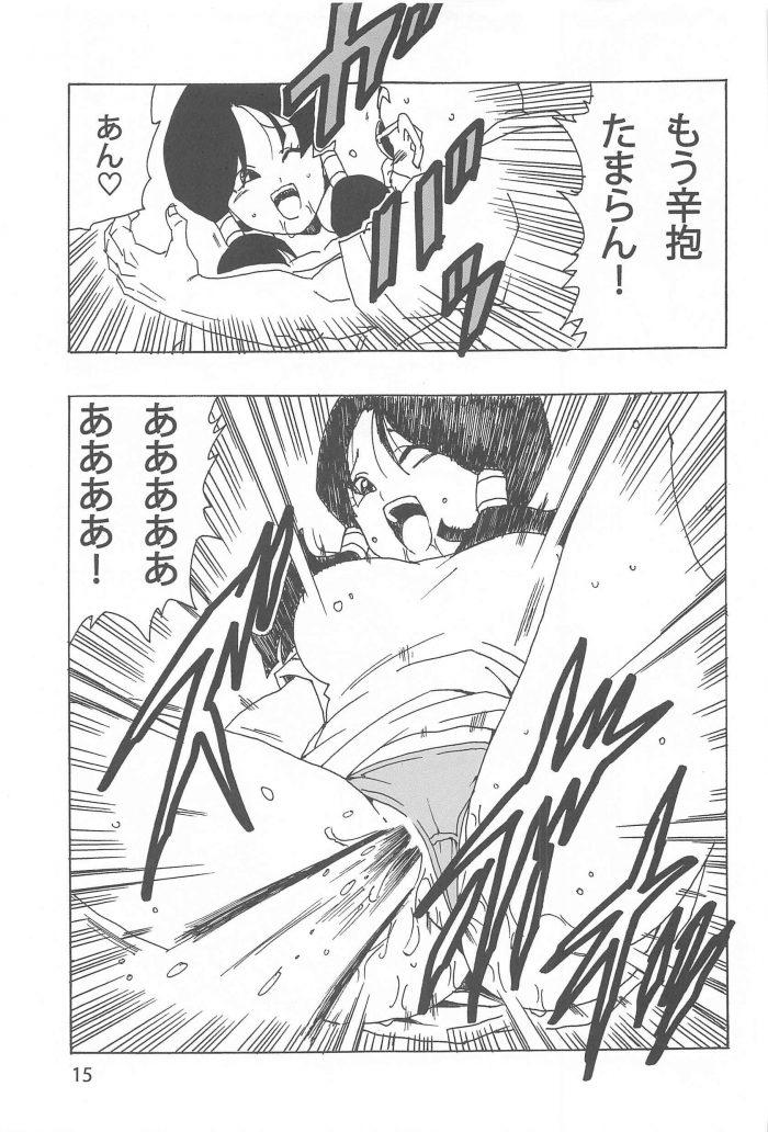 【エロ同人 DB】武術を習いにカメハウスを訪ねたビーデルが亀仙人と中出しセックス!【無料 エロ漫画】 (16)