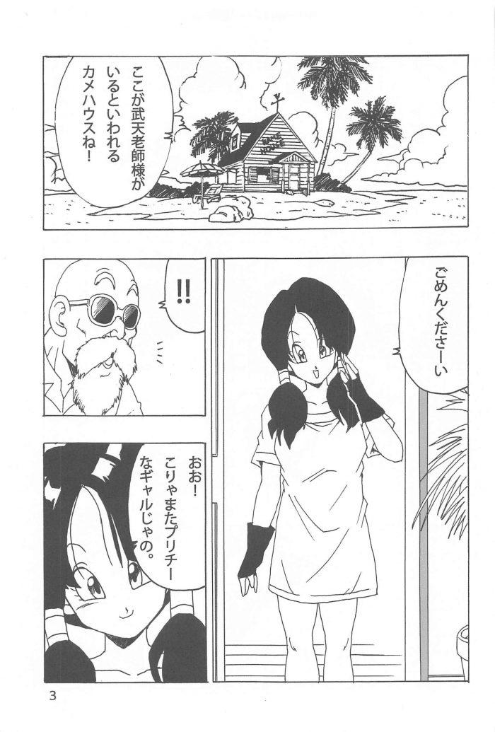 【エロ同人 DB】武術を習いにカメハウスを訪ねたビーデルが亀仙人と中出しセックス!【無料 エロ漫画】 (4)